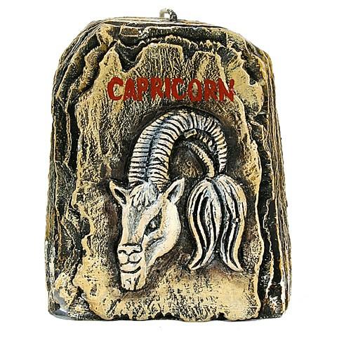 Capricorn-500x500